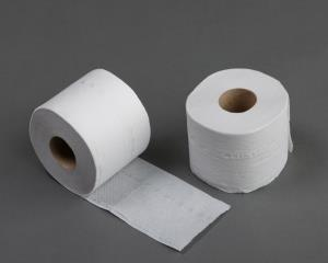 Recycled Toilet Roll    (36)